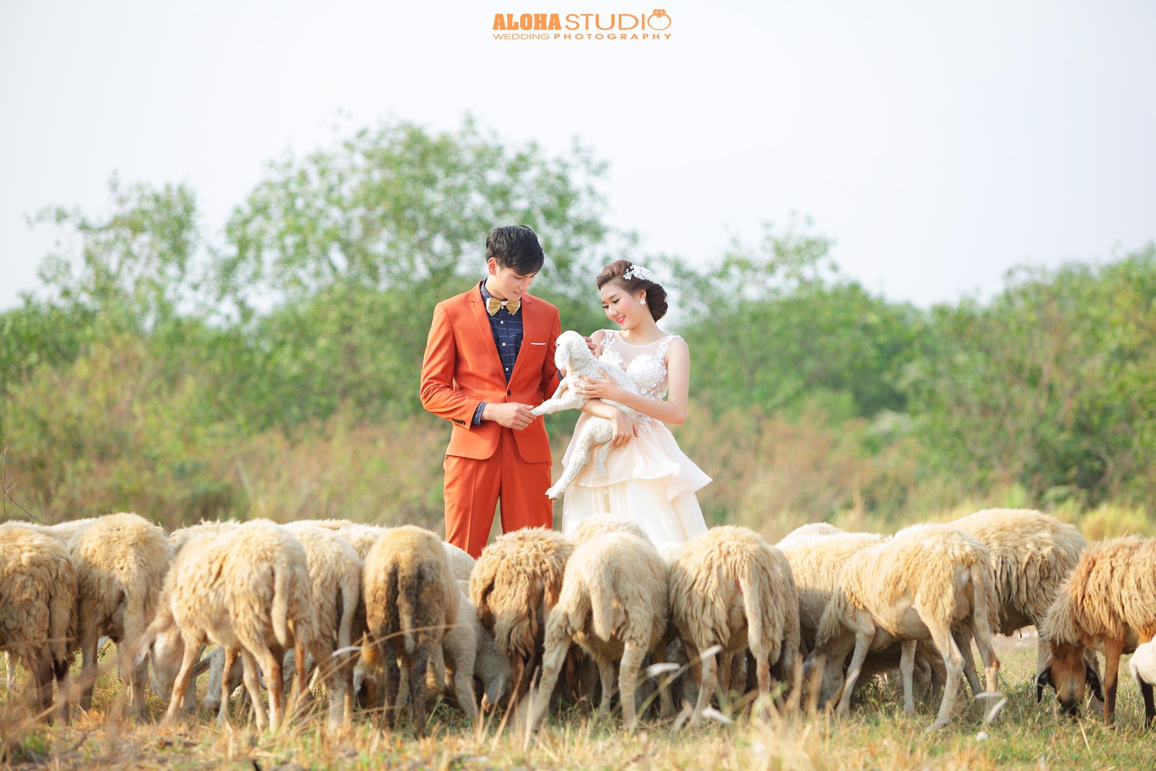 cưới phim trường ngoại cảnh
